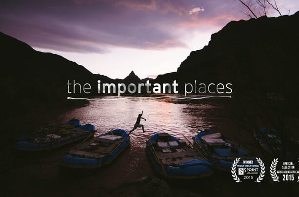 The Important Places – Forest Woodward