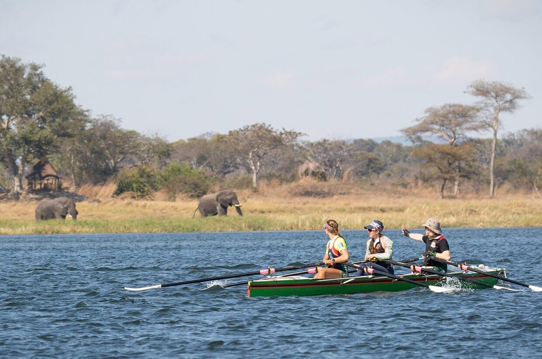 Row Zambezi