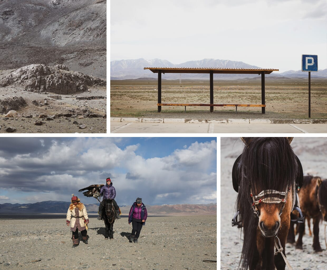 Threads from Mongolia